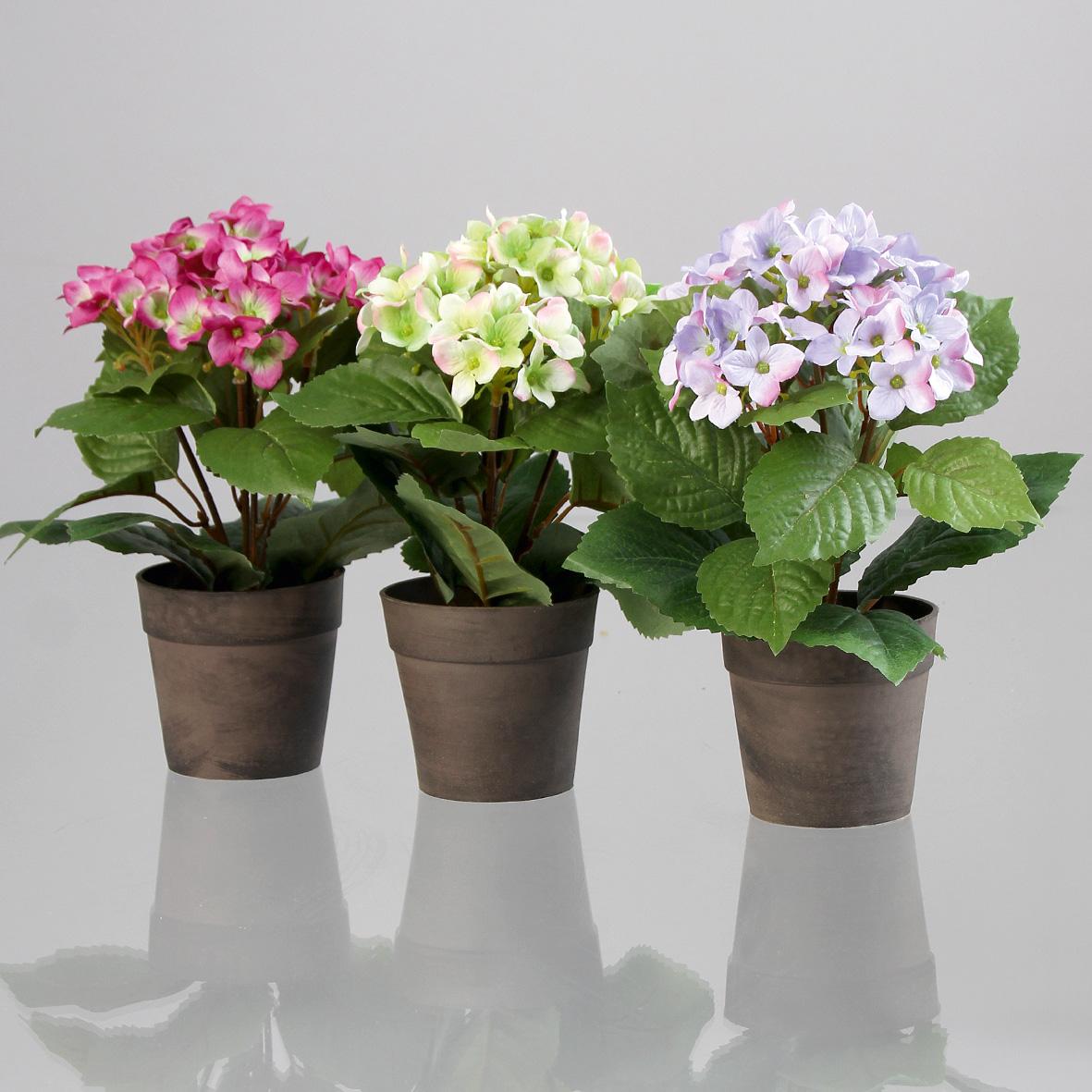 Hortensie Kunstpflanze im Topf Sortiment 3 Stück creme fuchsia blau
